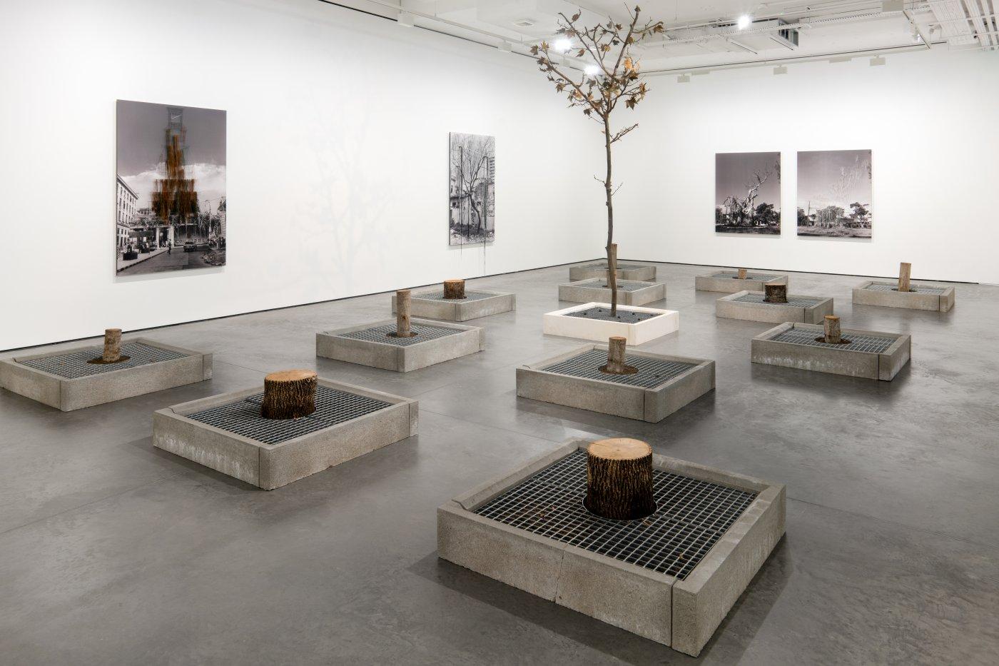 Goodman Gallery Carlos Garaicoa 3