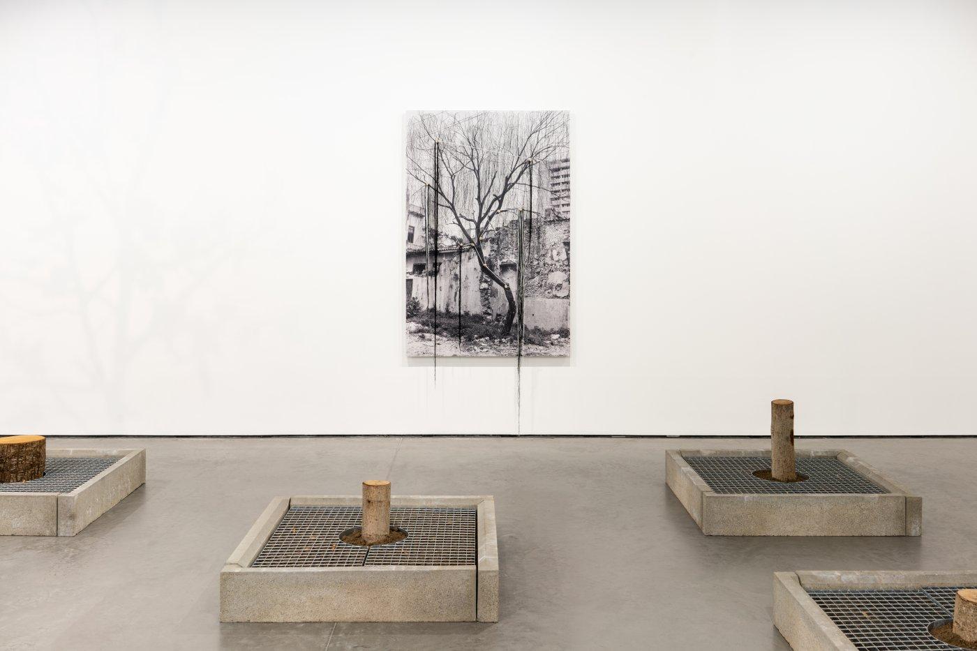 Goodman Gallery Carlos Garaicoa 4