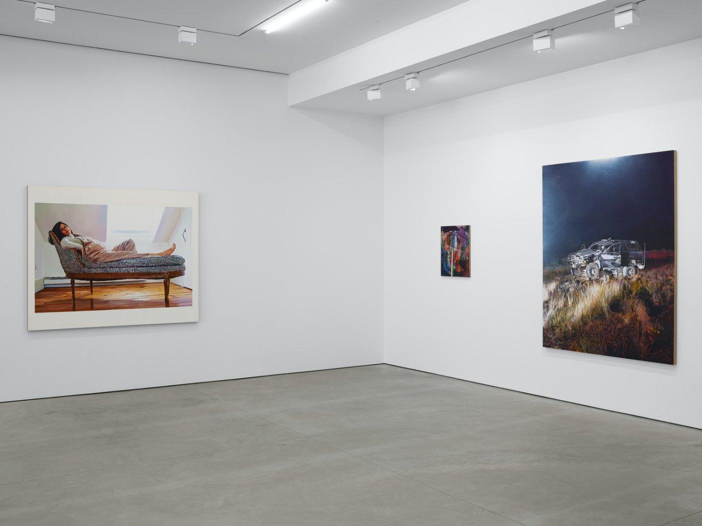 Lisson Gallery New York Van Hanos 3