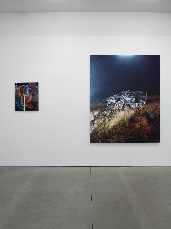 Lisson Gallery New York Van Hanos 4