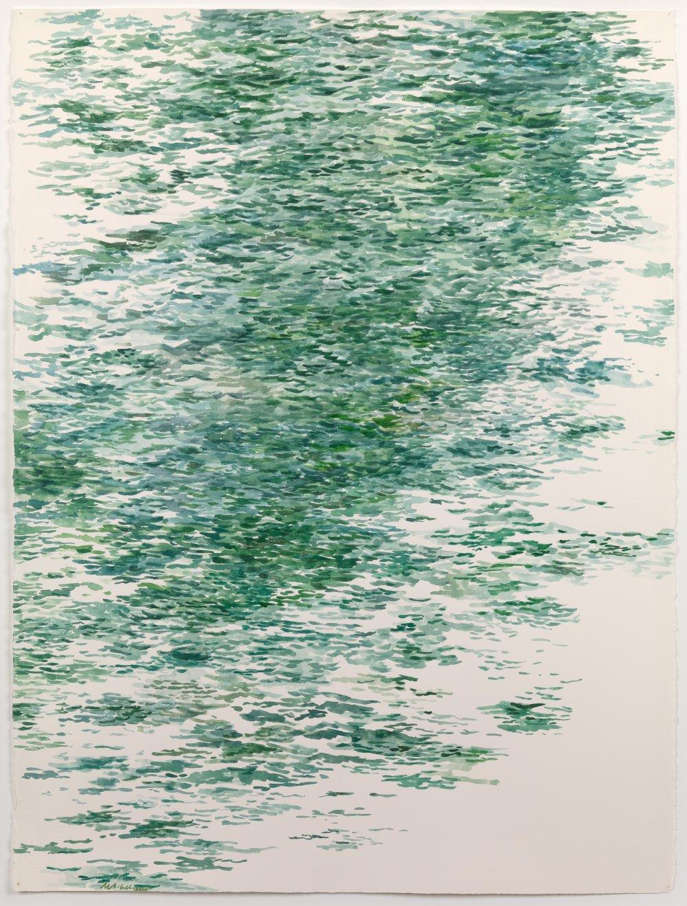 Venetian Lagoon Study