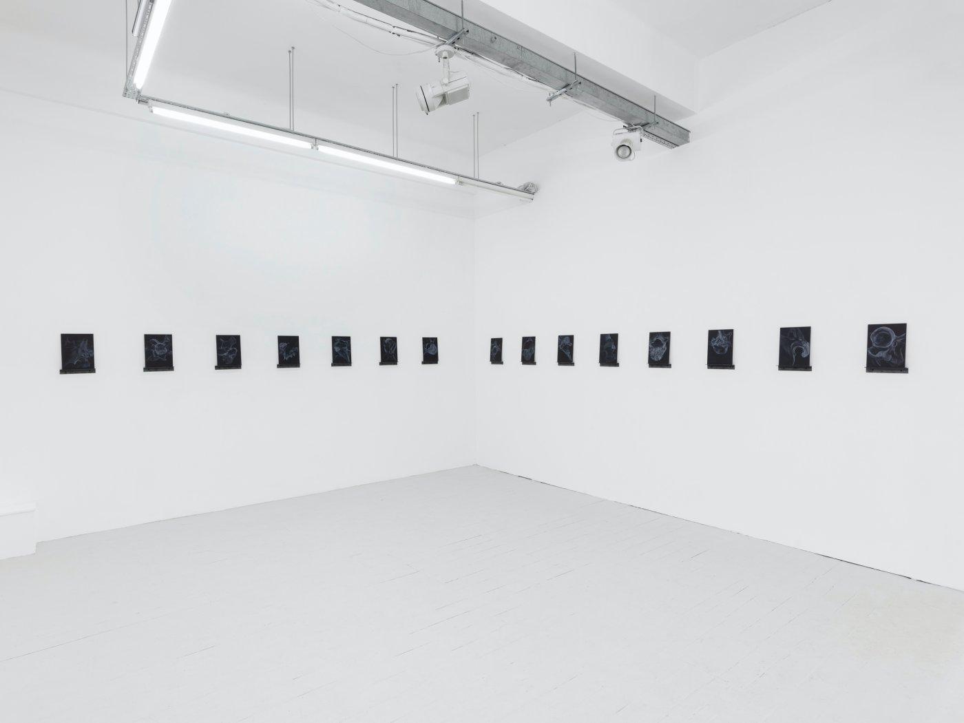 Pi Artworks Guy Haddon Grant 9
