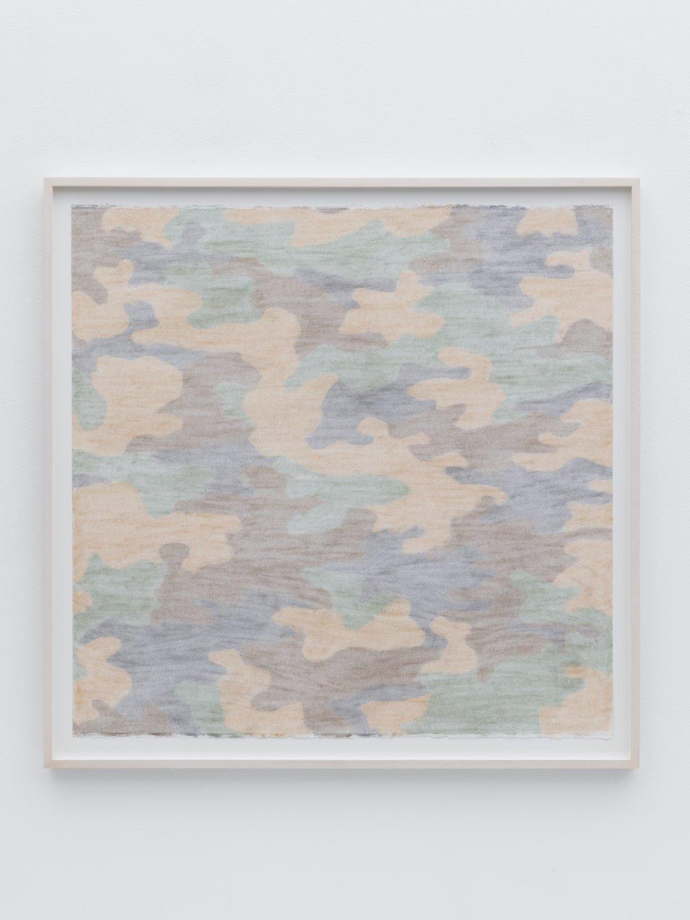Camouflage (erased)