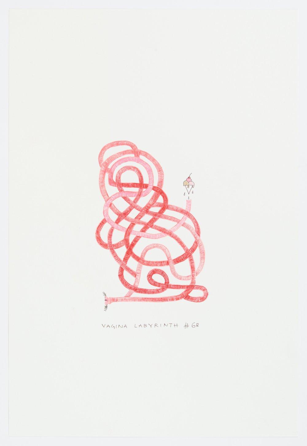 Vagina Labyrinth #6B