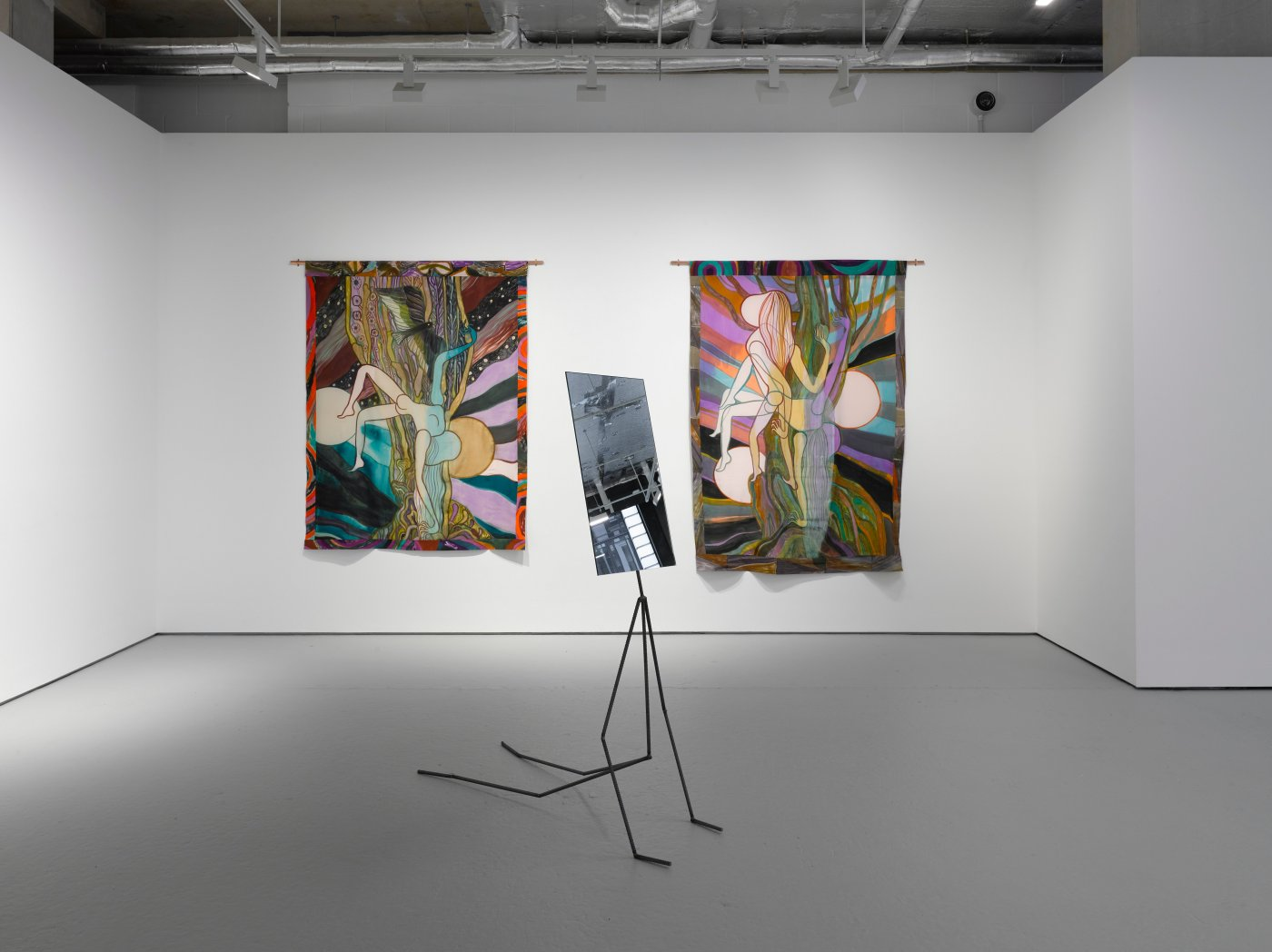Lisson Gallery Delights of an Undirected Mind 4