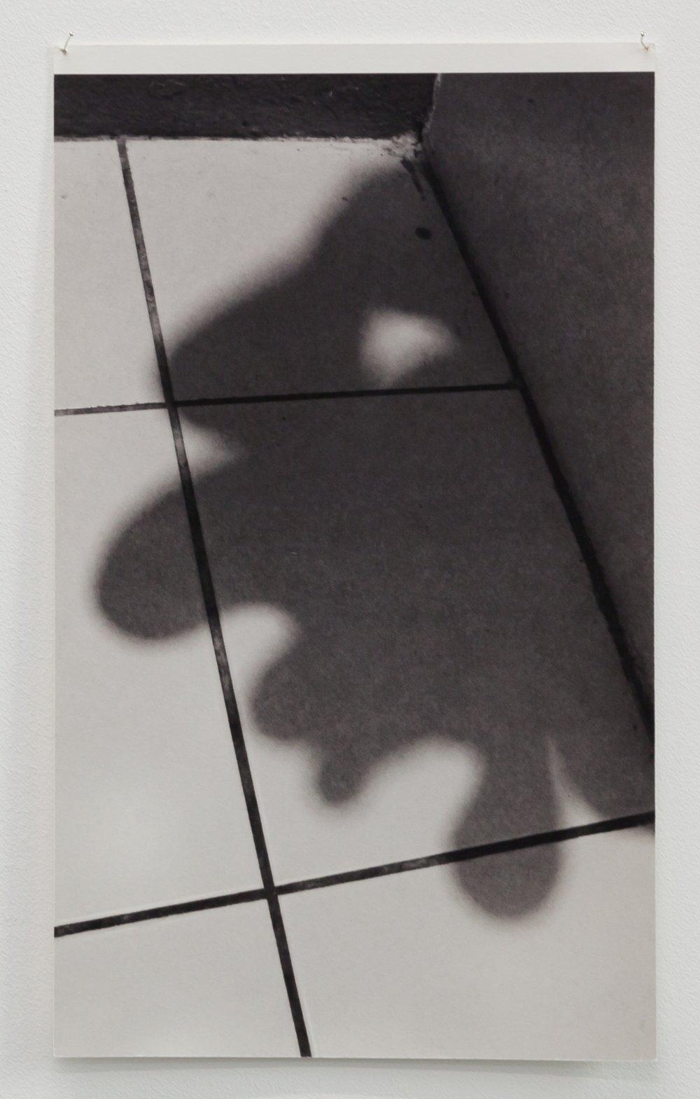 Untitled (Shadow Profiles #7)