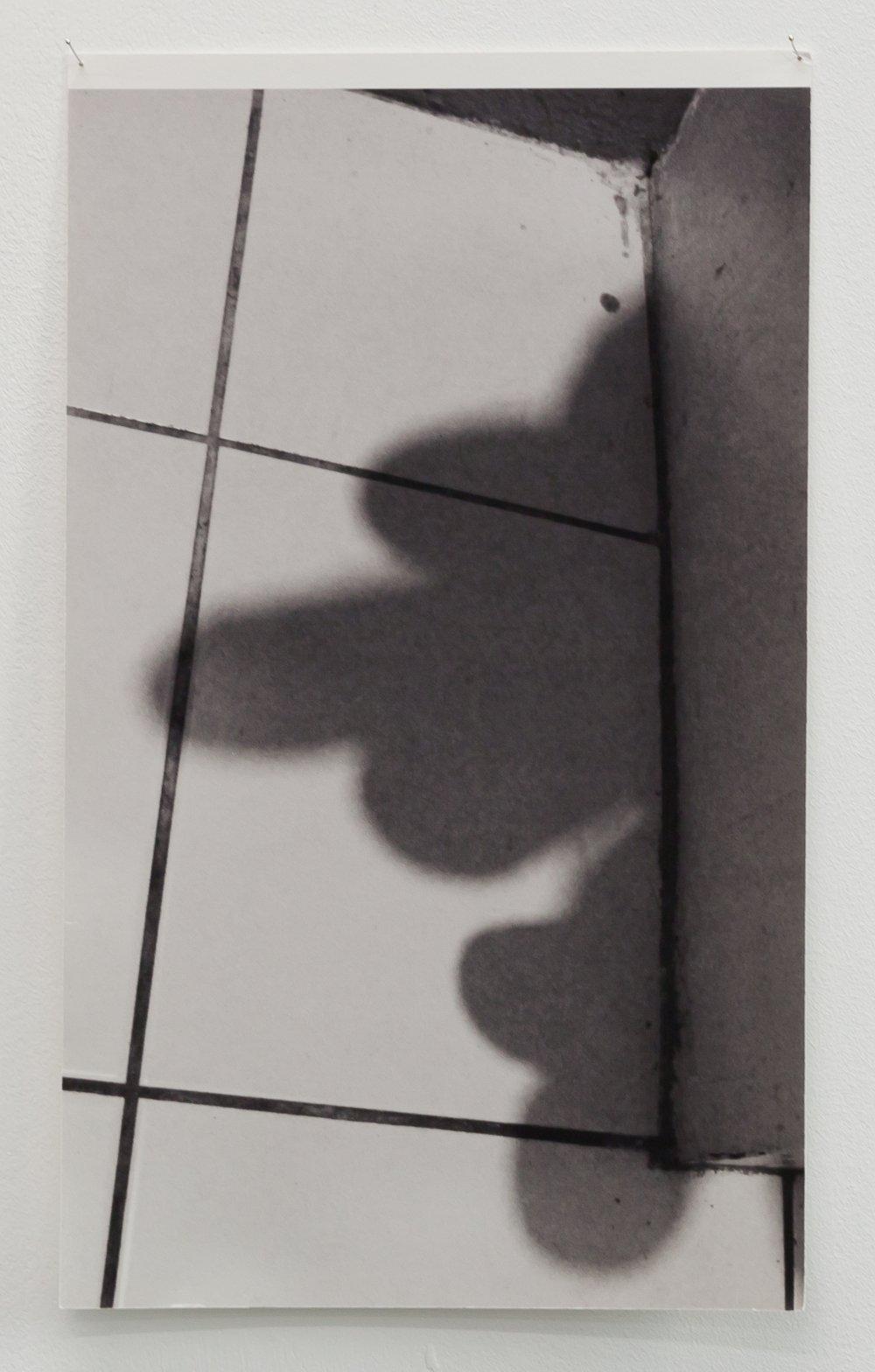 Untitled (Shadow Profiles #3)