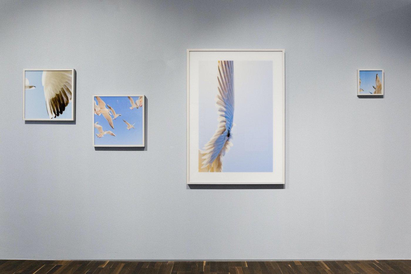 Christophe Guye Galerie Jun Ahn 7