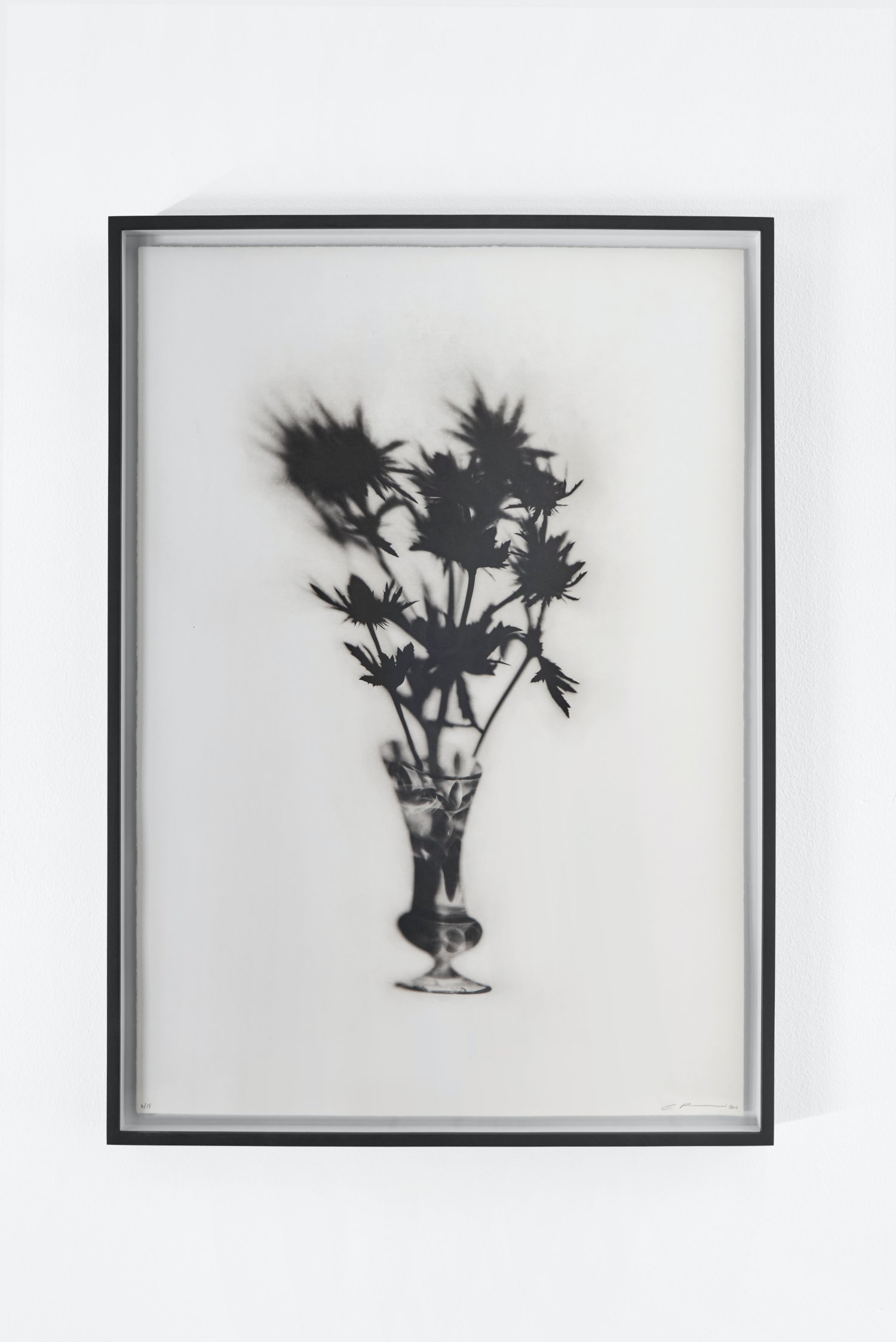 Cut Glass and Thistles
