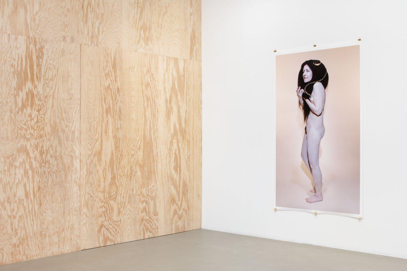 Galerie Chantal Crousel Dominique Gonzalez-Foerster 2