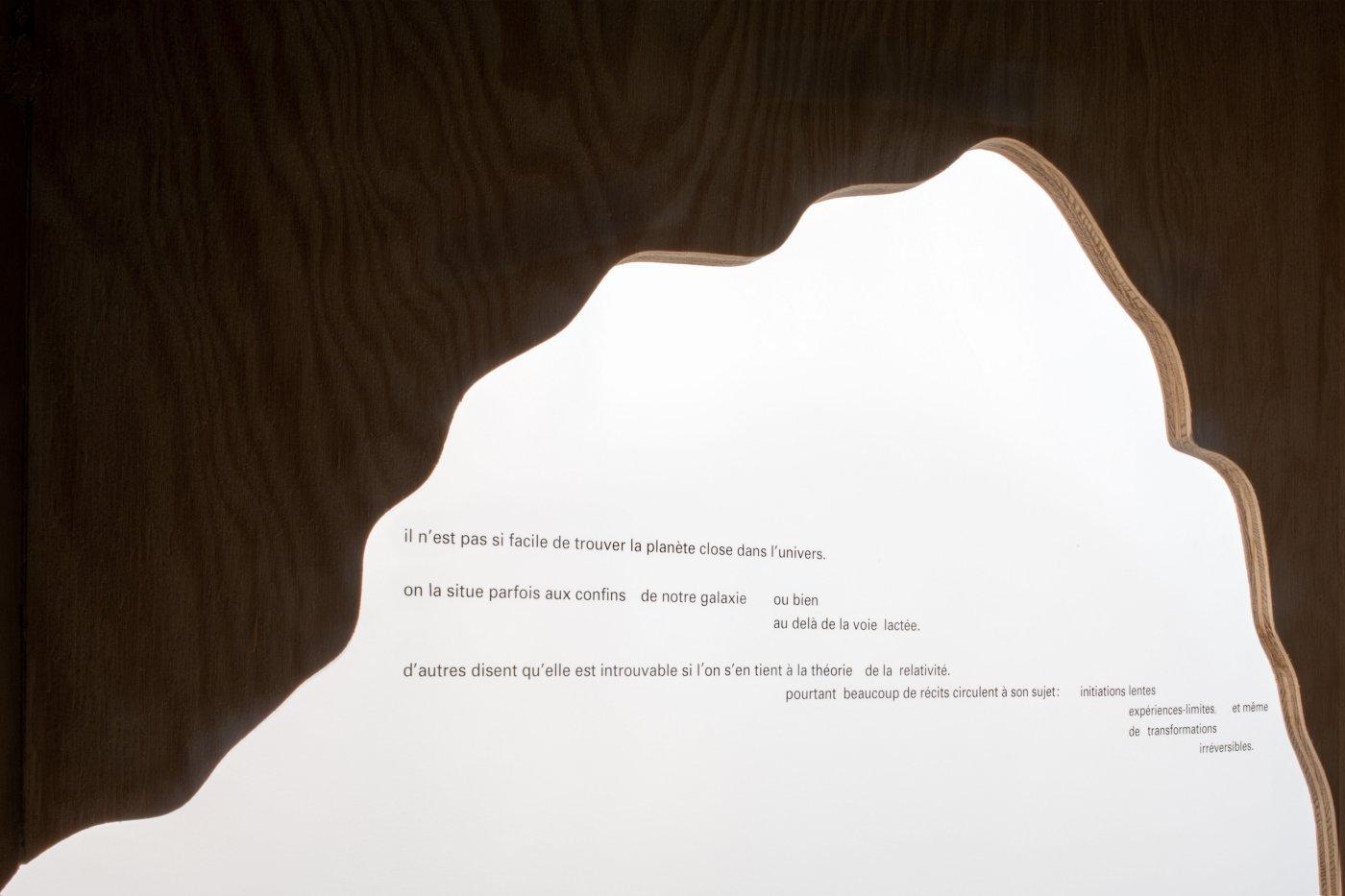 Galerie Chantal Crousel Dominique Gonzalez-Foerster 4