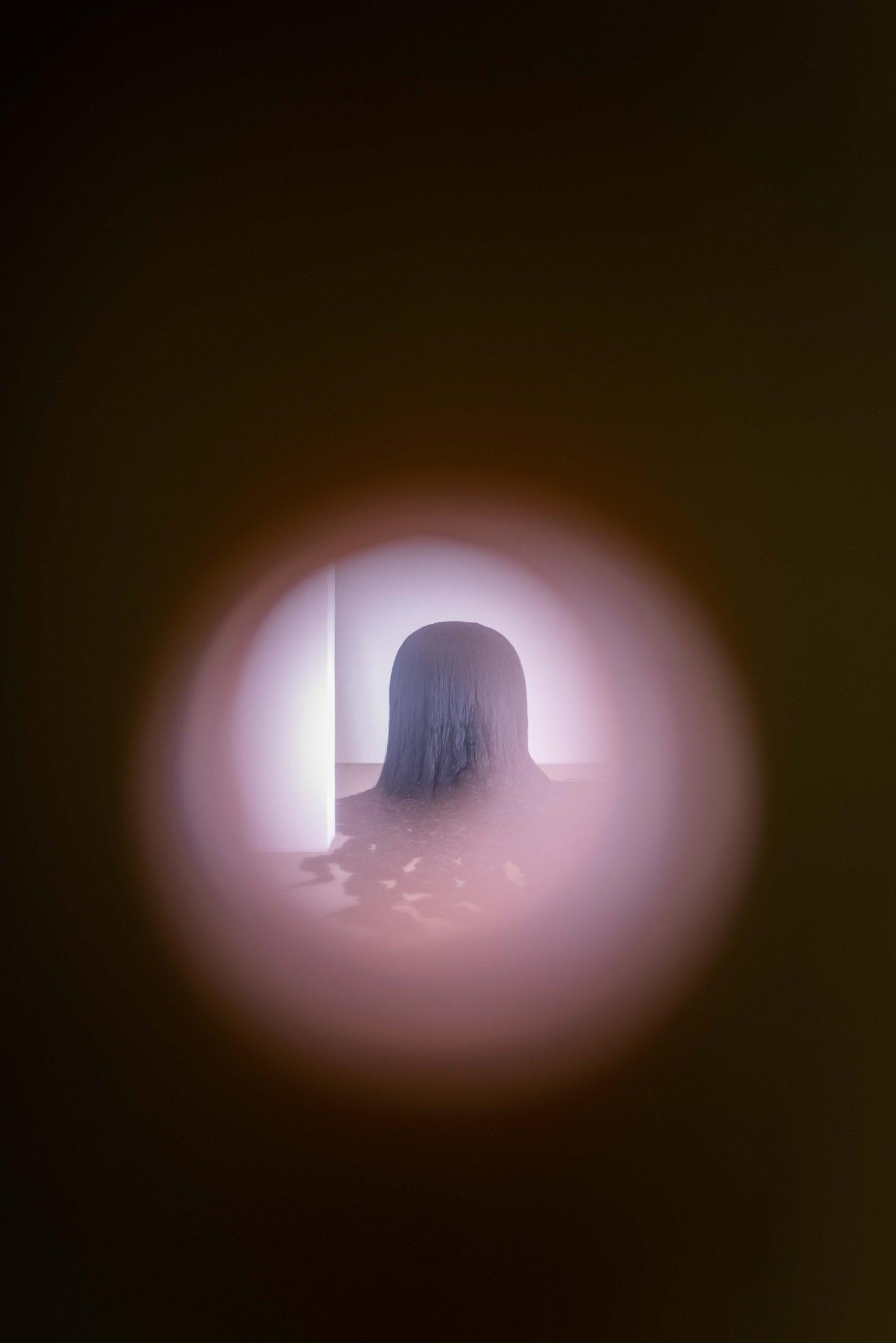 Galerie Chantal Crousel Dominique Gonzalez-Foerster 6