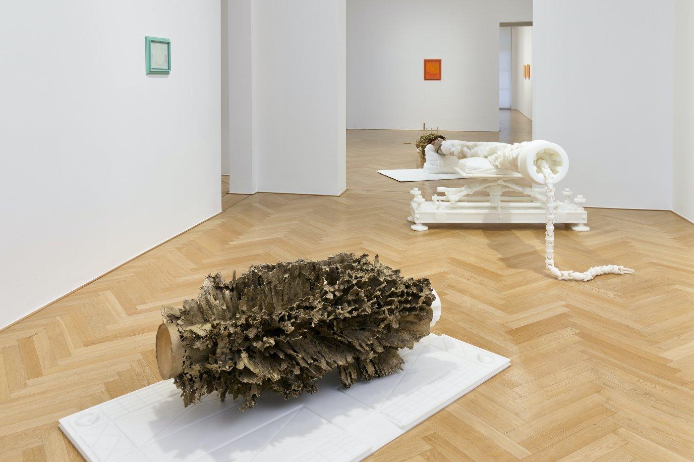 Galerie Max Hetzler Matthew Barney 7