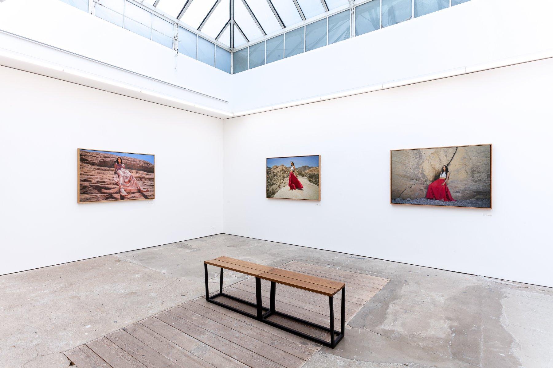 Pontone Gallery London Yigal Ozeri 1