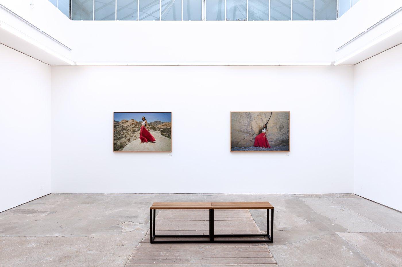 Pontone Gallery London Yigal Ozeri 2