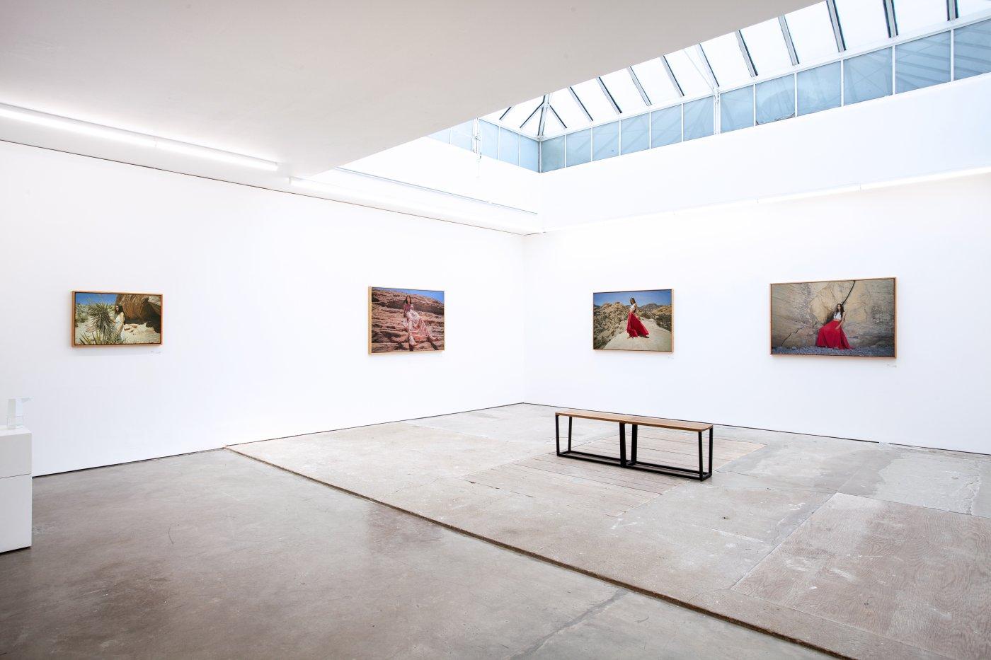 Pontone Gallery London Yigal Ozeri 3