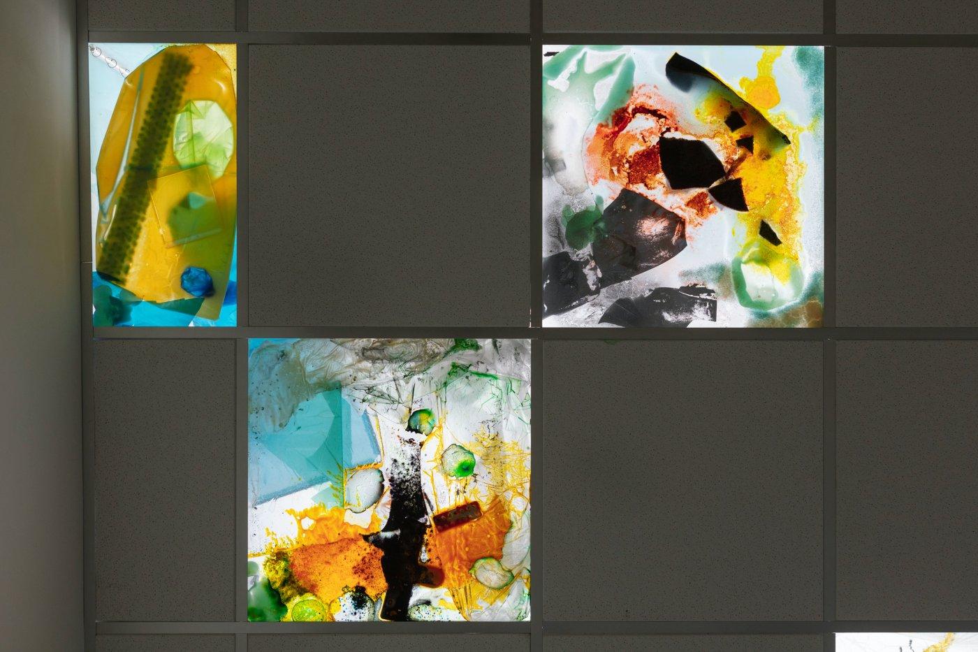 The Sunday Painter Samara Scott 5