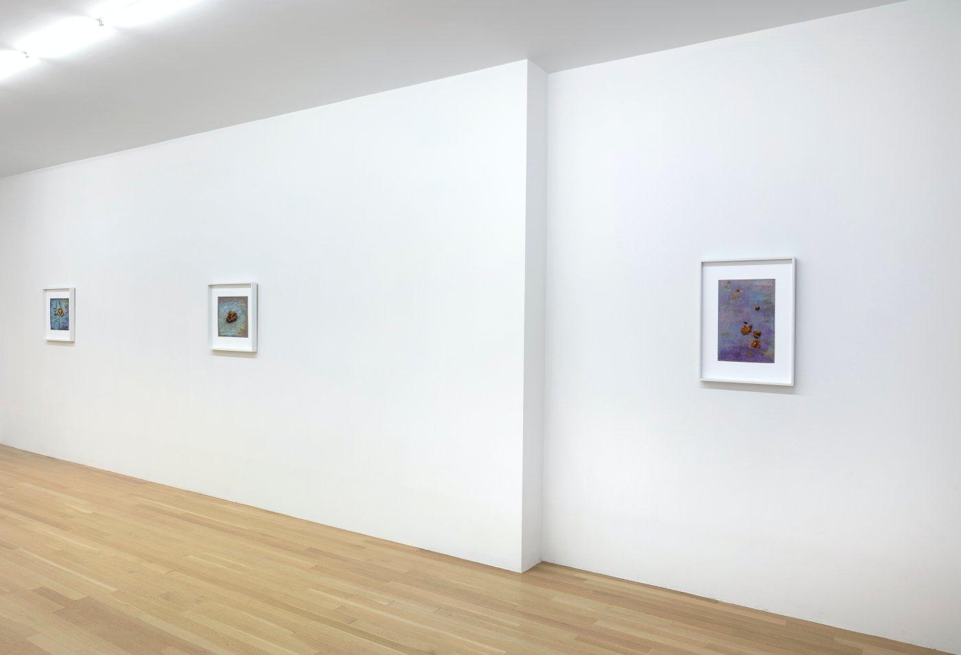 Galerie Buchholz John Kelsey 7