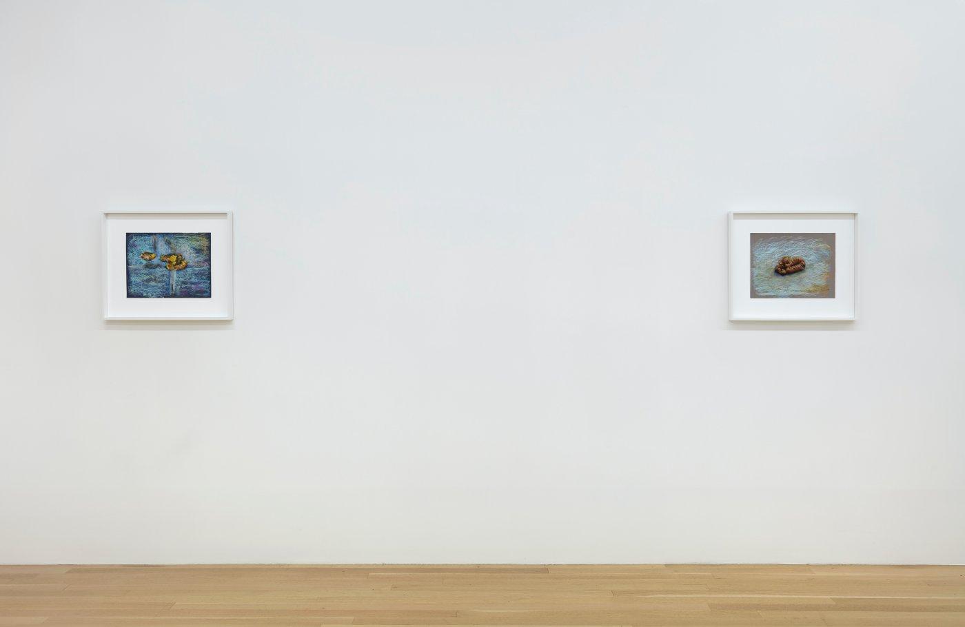 Galerie Buchholz John Kelsey 8