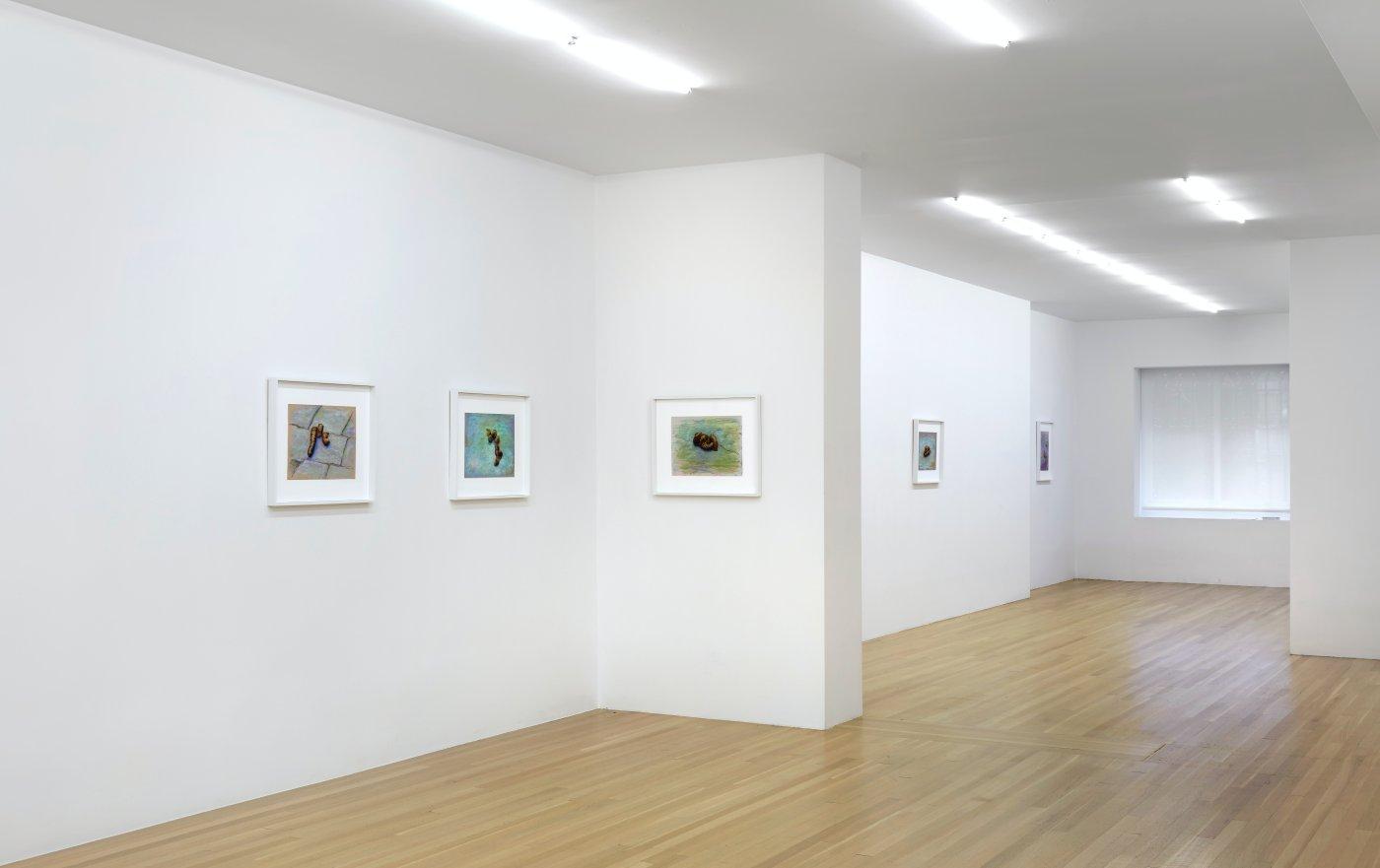 Galerie Buchholz John Kelsey 9