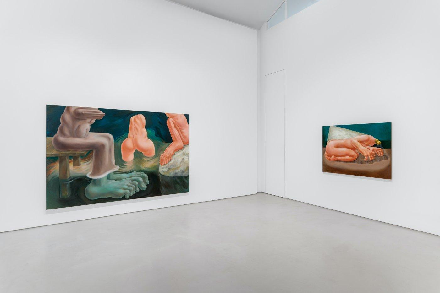 Galerie Max Hetzler Paris Louise Bonnet 6