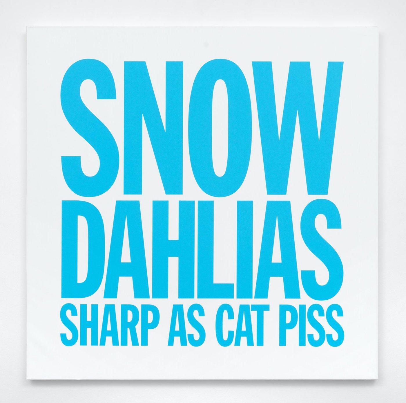 SNOW DAHLIAS SHARP AS CAT PISS